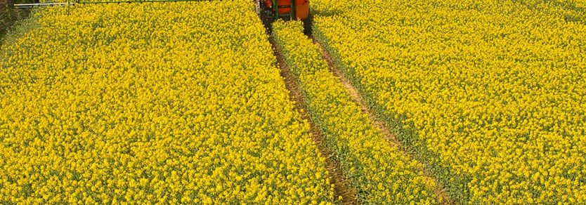 Loadtec serves the fertilisers industry